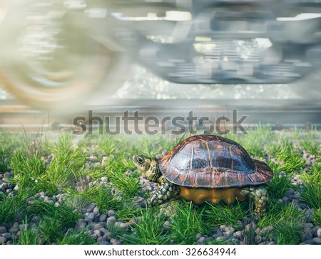 Who's faster. Railway track and train with running turtle. Travel technology concept Stock photo © denisgo
