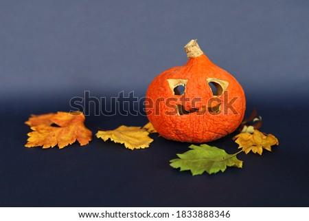 Spooky pumpkins as jack o lantern among dried leaves on black Stock photo © dla4