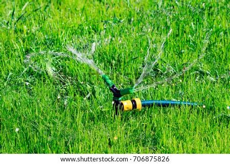 芝生 · スプリンクラー · 水まき · 庭園 · 水 · 春 - ストックフォト © nobilior