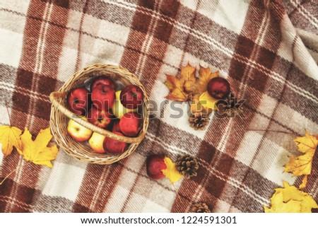 Marrom cesta maçãs amarelo Foto stock © TanaCh