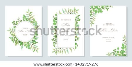 зеленые · листья · дерево · вектора · акварель · лет - Сток-фото © frimufilms