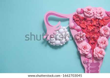 female reproductive system in flowers anatomy gynecology woman health hand drawn flat style stock photo © user_10144511