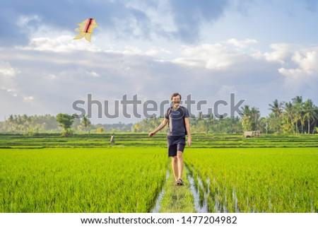 Menino pipa arrozal bali ilha Foto stock © galitskaya
