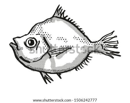 Malayan Deepsea Boarfish Australian Fish Cartoon Retro Drawing Stock photo © patrimonio