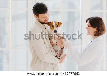 Orizzontale shot cane proprietario pet Foto d'archivio © vkstudio