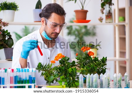 A young man extracting a sample of liquid from a testing tube. Stock photo © photography33