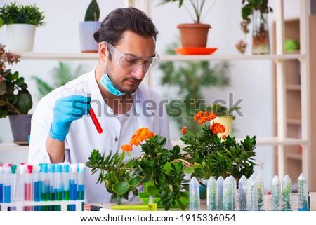 mosolyog · férfi · tudós · laborköpeny · tart · molekuláris - stock fotó © photography33