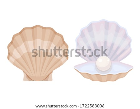 Macro necklace from pearls and a mollusk shell on a white backgr Stock photo © yul30