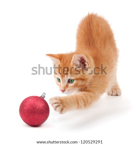 Cute Orange Kitten Playing with a Christmas Ornament on White Stock photo © gabes1976