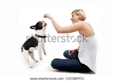 Funny English Bulldog play with a puppy Bull Mastiff the photo s Stock photo © vauvau