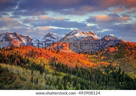 autumn mountain view Stock photo © wildman