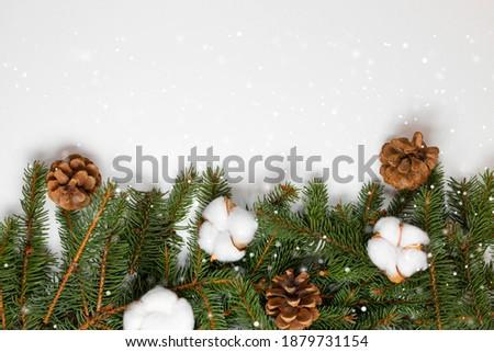 Kunst · Weihnachten · Dekoration · Tanne · Niederlassungen · weiß - stock foto © popaukropa