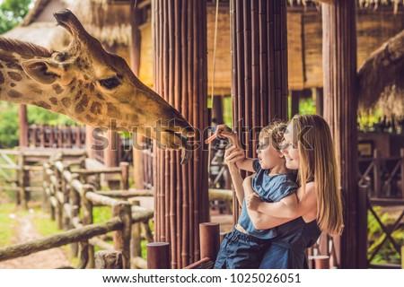 Happy mother and son watching and feeding giraffe in zoo. Happy family having fun with animals safar Stock photo © galitskaya