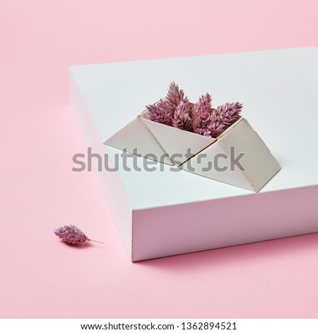 On the white box are pine cones in a cardboard triangular box on a pink background with space for te Stock photo © artjazz