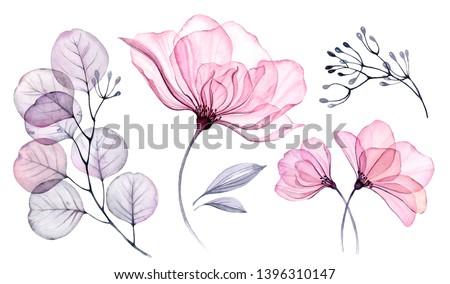 Projeto folhas floral ornamento violeta Foto stock © MarySan
