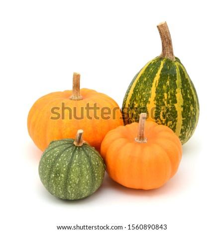 Verde laranja pequeno mini abóboras Foto stock © sarahdoow