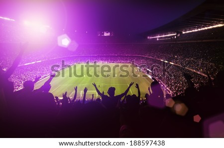 soccer fan stadium on the back Stock photo © pedromonteiro