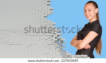 herbe · mur · de · briques · maison · construction · mur · maison - photo stock © cherezoff