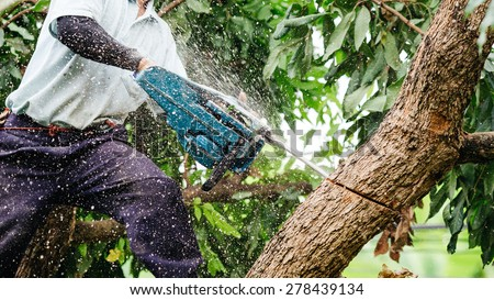 worker with a chainsaw trimming the tree branches on the city pa stock photo © smuki