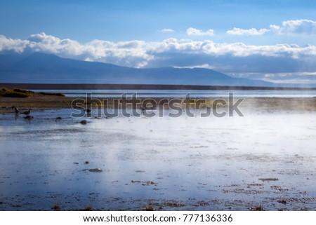 Lake in sol de manana geothermal field, sud Lipez reserva, Boliv Stock photo © daboost