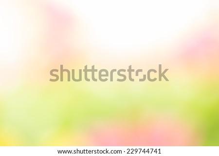 紫色 緑 ピンク 抽象的な ぼけ味 ライト ストックフォト © TasiPas