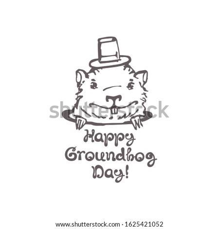 kalap · kézzel · rajzolt · kártya · ünnep · fesztivál · vektor - stock fotó © orensila