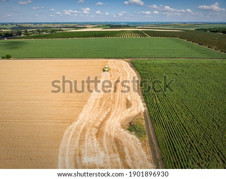 panoramic view of combine harvester reaps a crop in the field top view from drone stock photo © artjazz