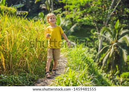 boy on green cascade rice field plantation at tegalalang terrace bali indonesia traveling with chi stock photo © galitskaya