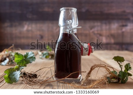Bottle of red wine in which roots of young Geum urbanum plants h Stock photo © madeleine_steinbach