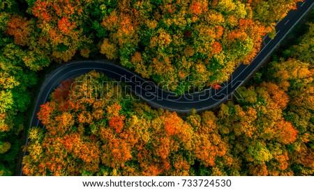 Légifelvétel út gyönyörű ősz erdő naplemente Stock fotó © galitskaya