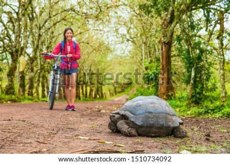 Galapagos Giant Tortoise and woman tourist cycling on bike on Santa on Galapagos Islands. Stock photo © Maridav