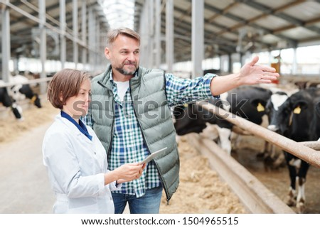 Confident head of modern farmhouse communicating with his female colleague Stock photo © pressmaster