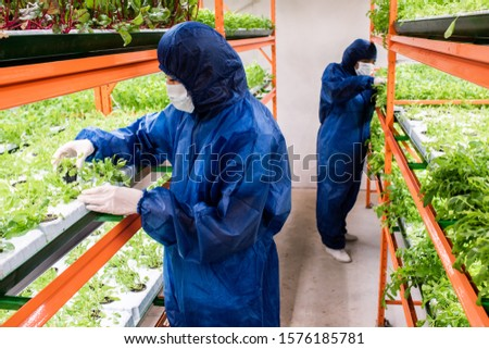 Two biologists in protective coveralls, gloves and masks selecting seedlings Stock photo © pressmaster