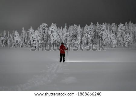 Ice and snow across the Tundra Stock photo © wildnerdpix