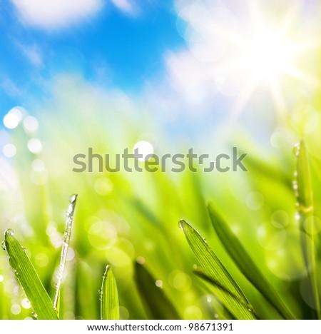 自然 · 背景 · 美しい · 緑 · ぼやけた · 夏 - ストックフォト © artjazz