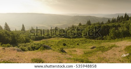 Scenic view from the Conglomerate Cliffs in  Cypress Hills Park Stock photo © pictureguy