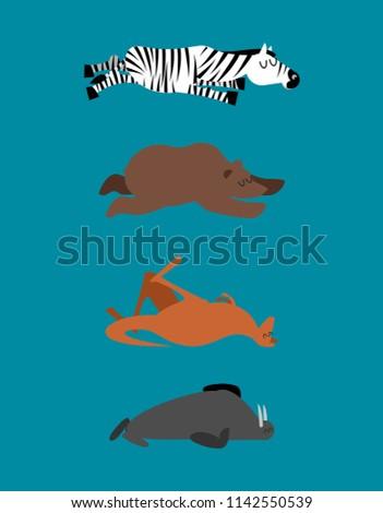 Dormir animaux zèbre ours kangourou Photo stock © popaukropa