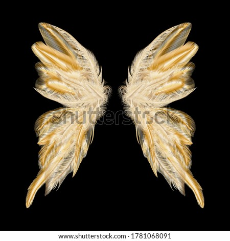 kelebek · altın · kanatlar · yalıtılmış · beyaz · vektör - stok fotoğraf © Lady-Luck