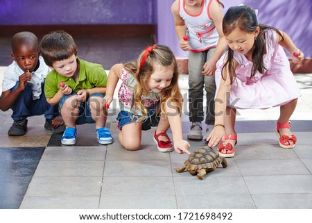 toddlers boy and girl caresses and playing with turtle in the petting zoo. concept of sustainability Stock photo © galitskaya