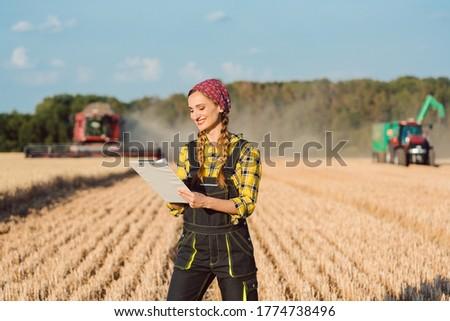 農業 · マシン · 収穫 · フィールド · ロシア - ストックフォト © kzenon