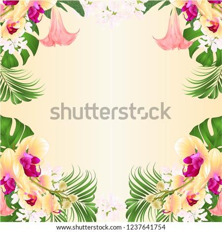 Vert carte laisse vecteur couleur pour aquarelle été Photo stock © frimufilms