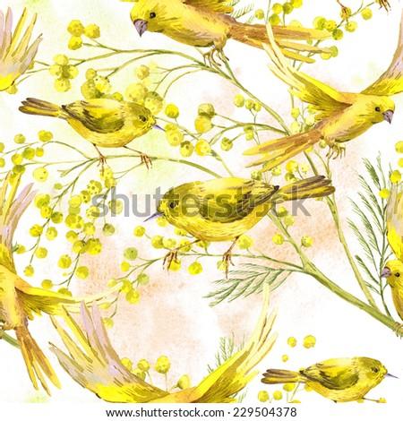 Seamless spring pattern yellow mimosa flowers symbol of womens day Stock photo © orensila
