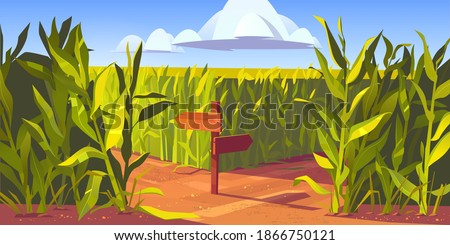 Stock photo: Arrow sign wooden board andLandscape of green field with blue sk
