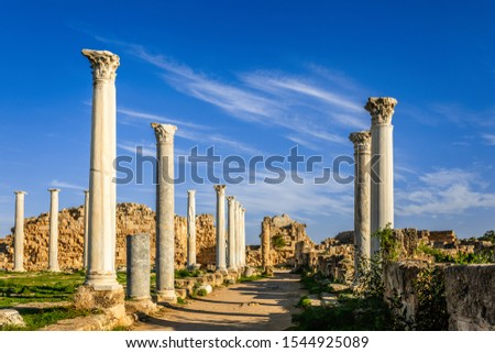 Archaeological site of ancient Salamis city. Famagusta district. Cyprus Stock photo © Kirill_M