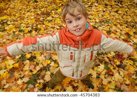 Portrait of boy in autumn park against fallen down leaves. Boy has stretched hands, looks in camera. Stock photo © Paha_L