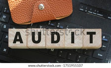 könyvvizsgálat · fehér · szó · kék · 3d · illusztráció · pénzügy - stock fotó © tashatuvango