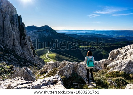 unrecognizable female person standing at high muntain viewpoint stock photo © stevanovicigor