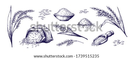 Tigela basmati arroz colher isolado alimentação saudável Foto stock © MaryValery
