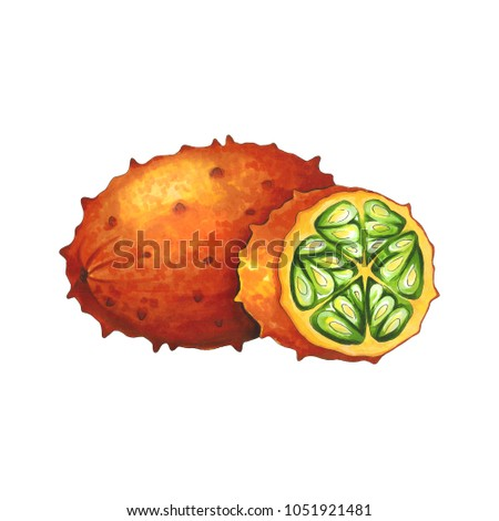 Kiwano fruit on a white background. Sketch done in alcohol marke Stock photo © user_10003441