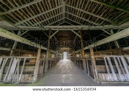 fal · plafon · elhagyatott · ház · penész · festék - stock fotó © yhelfman